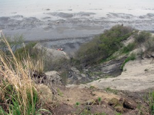 Cliff above beach