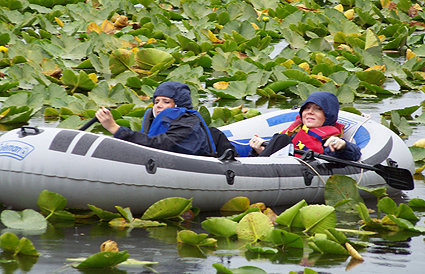 Girls stuck in lily pads