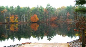 Powder Mill Pond near Greenfield