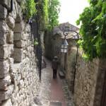 12 narrow pathways