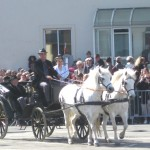 Carriage & horses