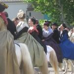 19 line of horses m&w