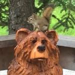 SAMMY on Mr. Bear